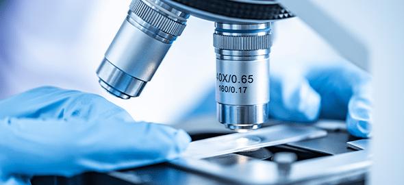 Moleküler Biyoloji Analizleri